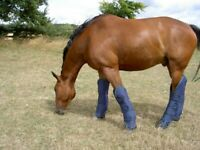 Gee Tac Horse travel boots  1200d outer heavy padded blue pony and full size