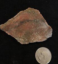 Red Orange Utah Agatized Dinosaur Gem Bone Specimen Slab