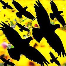 Set 25cm Aufkleber schwarz Vogel Schutz Warnung Tattoo Fenster Scheibe Dekofolie