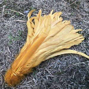 Wholesale, 10-1000pcs 12-14 inches/30-35 cm high quality rooster tail feathers