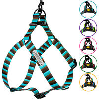 Personalized Dog Harness Step In Adjustable Nylon Harnesses for Dogs Puppy S M L