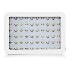 600W Dual Chips Full Light Spectrum LED Plant Growth Lamp Bloom Veg Fruit Flower