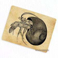 Hermit Crab Deco Magnet, Decorative Fridge Vintage Illustration Refrigerator