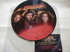 """Bee Gees / Spirits Having Flown /  Rare Picture Disc 12"""" !!"""