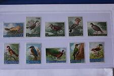 SAN MARINO 1960 serie completa 10 francobolli TEMATICA : UCCELLI COD UNI 510/19