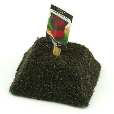 Dolls House Miniature Detroit Beetroot Seed Packet With A Stick
