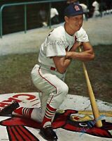 MLB 1963 St. Louis Cardinals Stan Musial on Deck Circle Color 8 X 10 Photo Pic