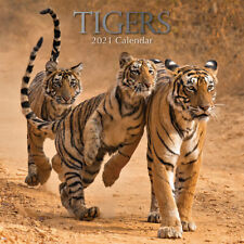 Tigers 2021 Premium Square Wall Calendar 16 Months New Year Christmas Decor Gift