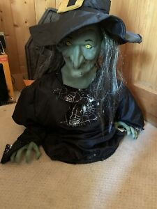 Grandin road animated ivana getup witch