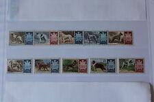 SAN MARINO 1956 SERIE 10 francobolli TEMATICA : CANI DOGS CHIENS ( UNI 439/48 )