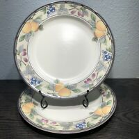 "MIKASA INTAGLIO GARDEN HARVEST Set Of 2 Dinner Plates 11"" CAC29"