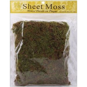 2 Pack Panacea Spanish Sheet Moss, Natural, 3 oz
