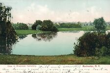 Vintage 1909 Rochester, NY View in Riverside Cemetery Printed Postcard
