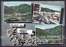 TRENTO MALÈ 05 MALE' SALUTI da... VEDUTINE Cartolina FOTOGRAFICA viaggiata 1960
