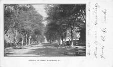 HAMMOND, LA ~ AVENUE OF OAKS, HOMES, PRIVATE MAILING CARD ~ used 1904