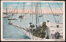 KEY WEST FL Sponge Boat Load Black Americana Postcard