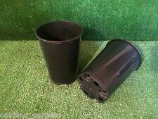 10 X DEEP 2 LITRE L LT ROSE POTS PLASTIC PLANT POT TOP QUALITY