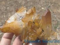 SPECTACULAR DISPLAY___TOP COLLECTOR___LARGE Arkansas Quartz Crystal Cluster