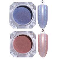2 Boxen BORN PRETTY Holographisch Nagel Glitzern Pulver Nail Art Powder Lot