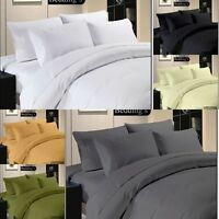 NEW Premier HOTEL QUALITY 800TC BEDDING 100% EGYPTIAN COTTON Bedding in SOLID