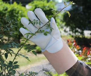 2,5mm starke bis 3,5mm extra starke Dornenhandschuhe, Rosenhandschuhe