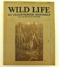 Wild Life old illustrated magazine Douglas English May 1914 axolotl x-ray photos