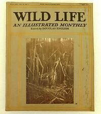 Wild Life old illustrated magazine Douglas English May 1914 axolotl x-ray photos