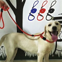 Adjustable Traction Collar Pet Dog Leash Slip Lead Nylon Rope Strap For Training