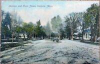 Walpole, MA 1906 Postcard: Common & Front Streets - Massachusetts Mass