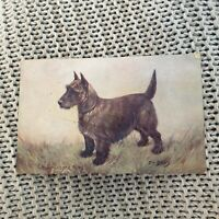 The Scottish Terrier, by F.T. Daws - Vintage Postcard