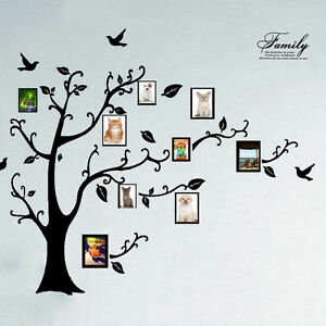 Huge Family Tree Wall Stickers Birds Photo Frame Quotes Art Decals Home Decor UK