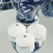 White Resin Faux Cairns Coral Collection 3 piece Hamptons Coastal Home Decor