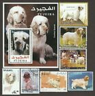 CLUMBER SPANIEL ** Int'l Dog Postage Stamp Art Collection ** Great Gift Idea **