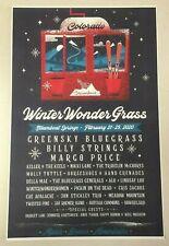 Winter WonderGrass 2020 Colorado 11x17 Poster Greensky Bluegrass & Billy Strings