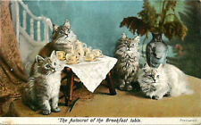 Postcard Kittens w/ Tea Cups & Tea Pot - Autocrat of the Breakfast Table