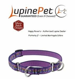 """Lupine Lifetime Train Martingale Dog Collar 3/4""""  LIMITED PATTERN - FLUTTERBY"""