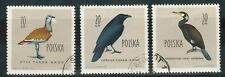 Stamps Poland. Three bird stamps, bustard, raven and cormorant. Used, LH/HH