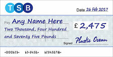 LARGE Personalised TSB BANK Cheque for Charity / Presentation / Fundraising