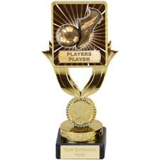 FOOTBALL SOCCER PLAYERS PLAYER TROPHY QUALITY ENGRAVED FREE SQUAD TEAM TROPHIES