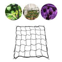 Elastic Scrog Net Trellis w/ Hooks Plant Support for Garden Grow Tent 60-150cm