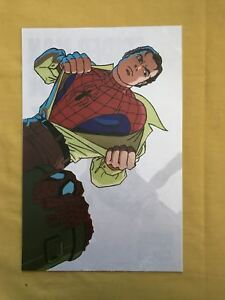 Spider-Man Window Decal Fox 1994 NM Near Mint