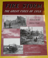 Fire Storm 2003 The Great Fires of 1918 in Minnesota Great Pictures! See!