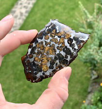 More details for pallasite meteorite sericho 35 grams