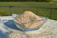 Sesamkörner 1 kg Sesamsamen Sesam Saat weiß ungeschält ungeröstet 99,7% Reinheit