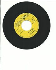 "Rare Breed ""In The Night"" (Cool As A Moose) Garage  HEAR"