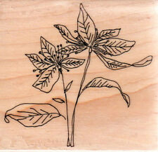 New  PENNY BLACK RUBBER STAMP Flower Christmas  COLOR POINSETTIA Free us ship mt