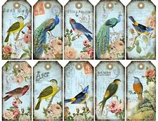 Peacocks Birds & Roses Tags Glossy Finish Card Topper Crafts Embellishment