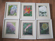 great professal phototogaphy art pictures of flowers six of them