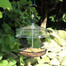 Deluxe Mealworm Bird Feeder Hanging Feeding Station Tray Canopy Adjustable
