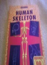 Human Skeleton (Build Your Own)-Pat Doyle